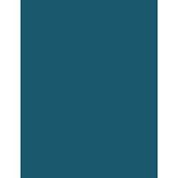 roxpaint250x250